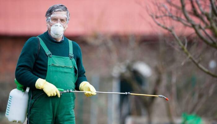 رش المبيدات